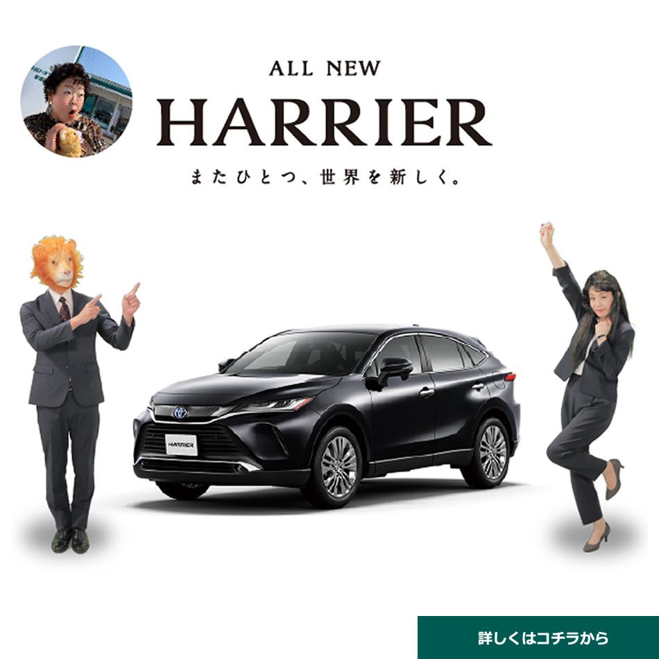 新型ハリアーLP用
